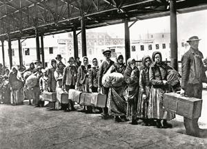 54 emigranti