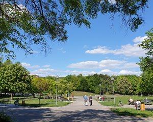 Park Družba
